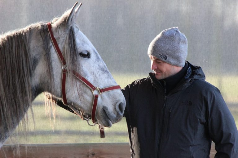 Kheiron | Equine Assisted Learning | Individuele coaching