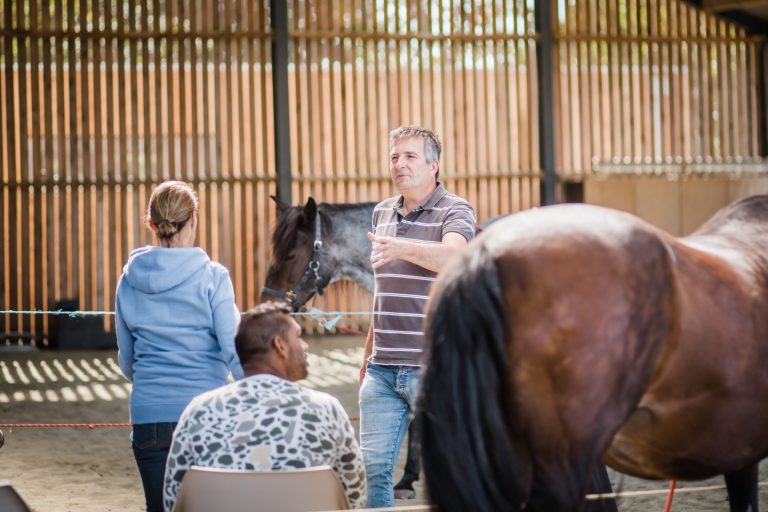 Kheiron | Equine Assisted Learning | Workshop in company met Philip