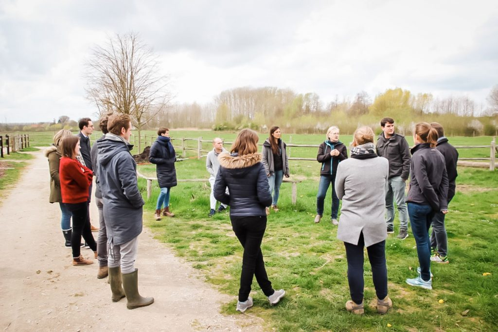Kheiron | Equine Assisted Learning | Workshop in company