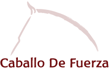 Kheiron | Equine Assisted Learning | Partners | Caballo De Fuerza logo