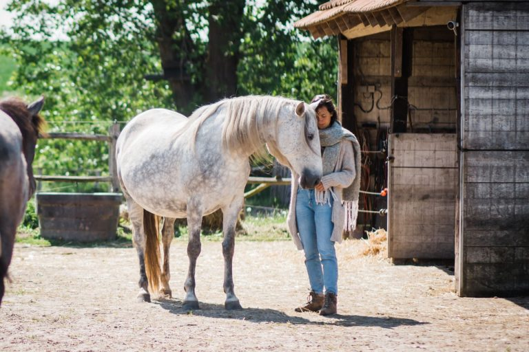 Kheiron | Equine Assisted Learning | Cartujano paard met Joséphine
