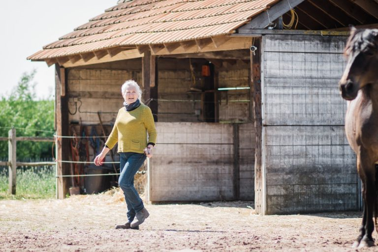 Kheiron | Equine Assisted Learning | Peruaanse Paso met Klara
