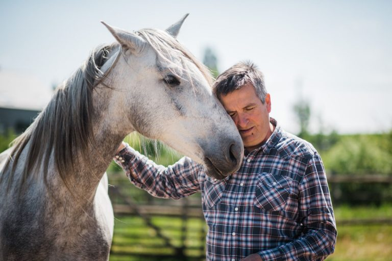 Kheiron | Equine Assisted Learning | Cartujano paard met Philip
