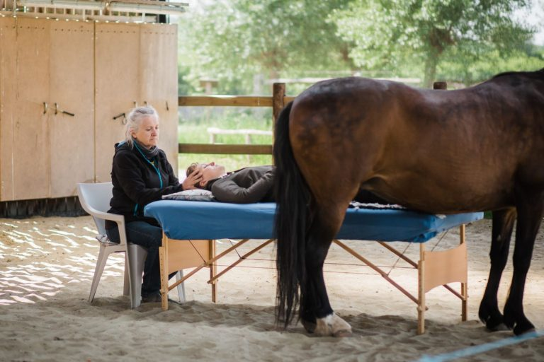 Kheiron | Equine Assisted Learning | Klara osteopathie paarden